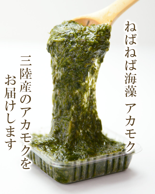 海藻アカモク
