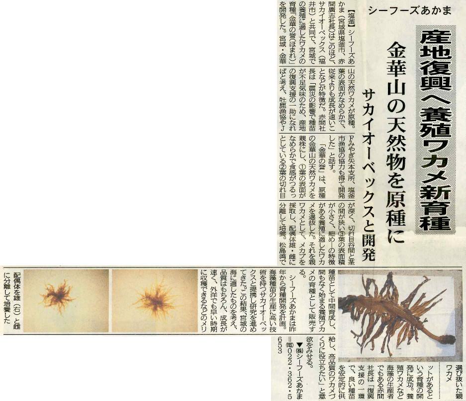 日刊みなと新聞 2012年9月25日